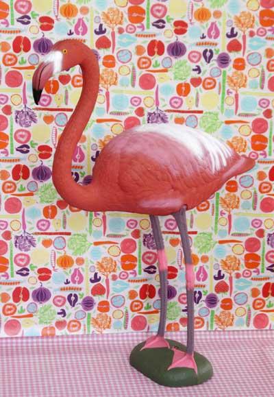 flamingo_morkrosavit_1